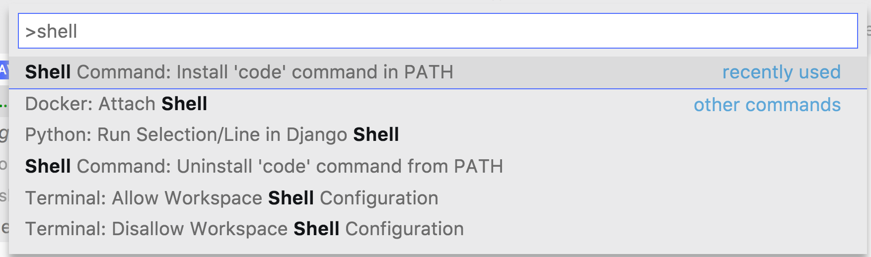 VS Code Install Shell Command in Path